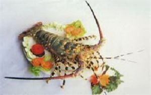 Picture of LOBSTERS