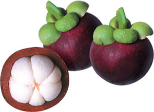 Picture of FRESH MAGOSTEEN FRUIT