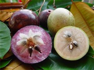 Picture of FRESH STAR APPLE FRUITS