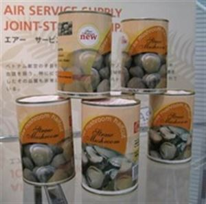 Picture of Canned Straw Mushrooms in brine